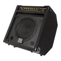 Beta Aivin BP80 Bass Amp - 80 Watts