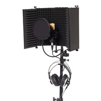 Home Studio Vocal Recording Package - BM-700 Condenser Mic