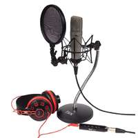 iSK BM-600 Condenser Microphone Desktop Recording Package