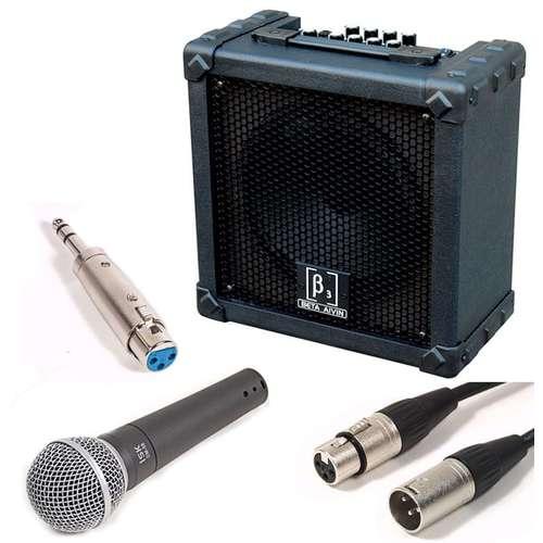 singer songwriter mic and amp package 20w amplifier swamp. Black Bedroom Furniture Sets. Home Design Ideas