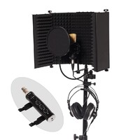Home Studio Vocal Recording Package - BM-700 Condenser + USB Interface