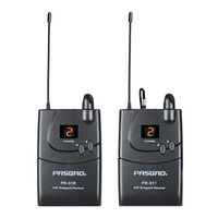 Pasgao PV70 Portable Wireless Audio System